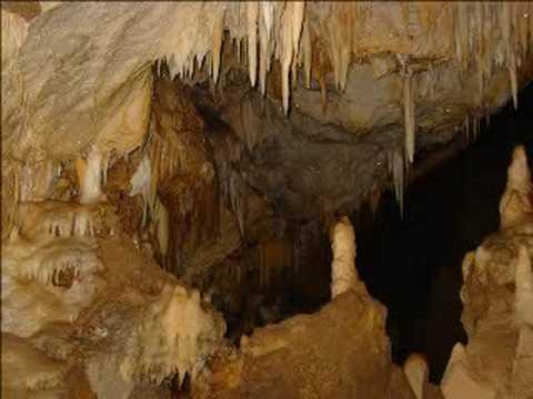 Resultado de imagen para cueva del guacharo
